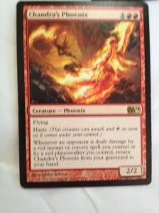 21 Chandra Phoenix